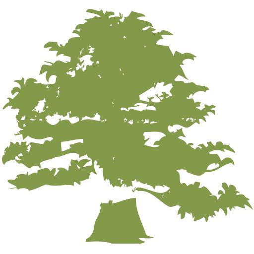 Baumpflege-Baertschi